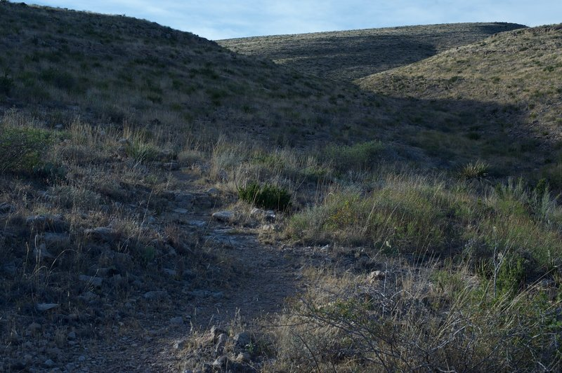 The trail is singletrack and marked by cairns as it makes its way through the grass and cacti.