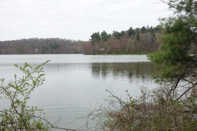 Lake Williams, William Kain Park