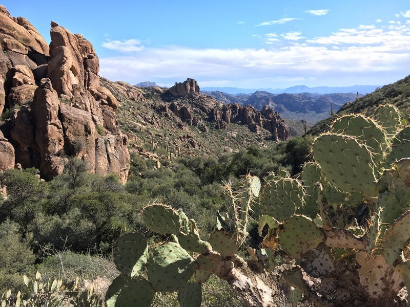 Along the Peralta Canyon Trail, you'll have a spectacular view of the mountains behind you as you're on your way to Weaver's Needle.