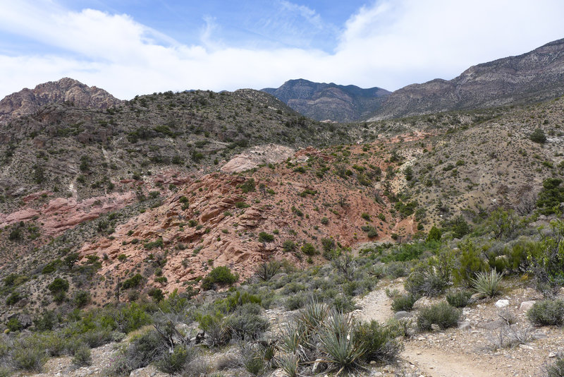 View of the Keystone Thrust from the end of the trail.