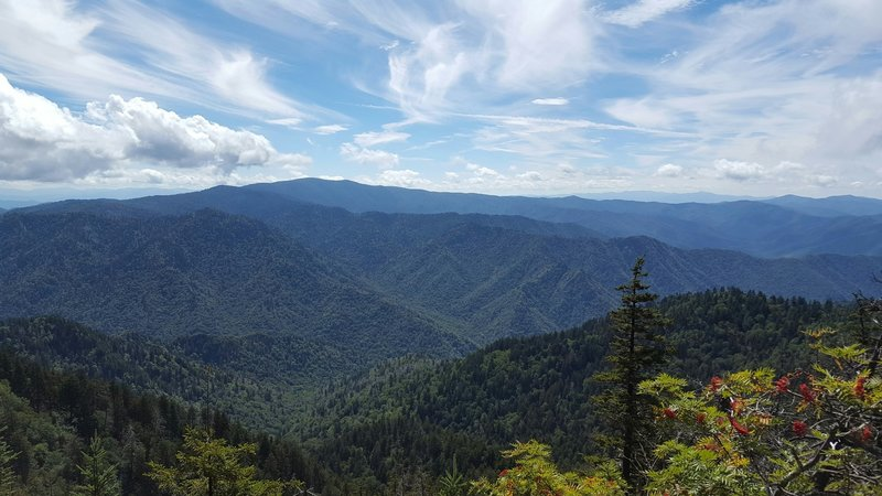 Alum Cave Trail offers incredible views of the Smoky Mountains.