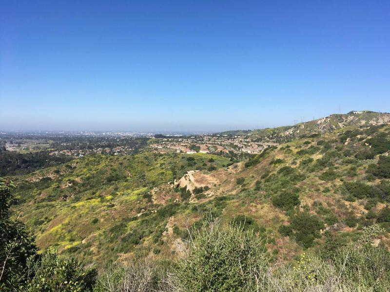 Enjoy this view of the ridgeline from the Peralta Hills Trail. If you look closely, you can see two turkey vultures on the rock.