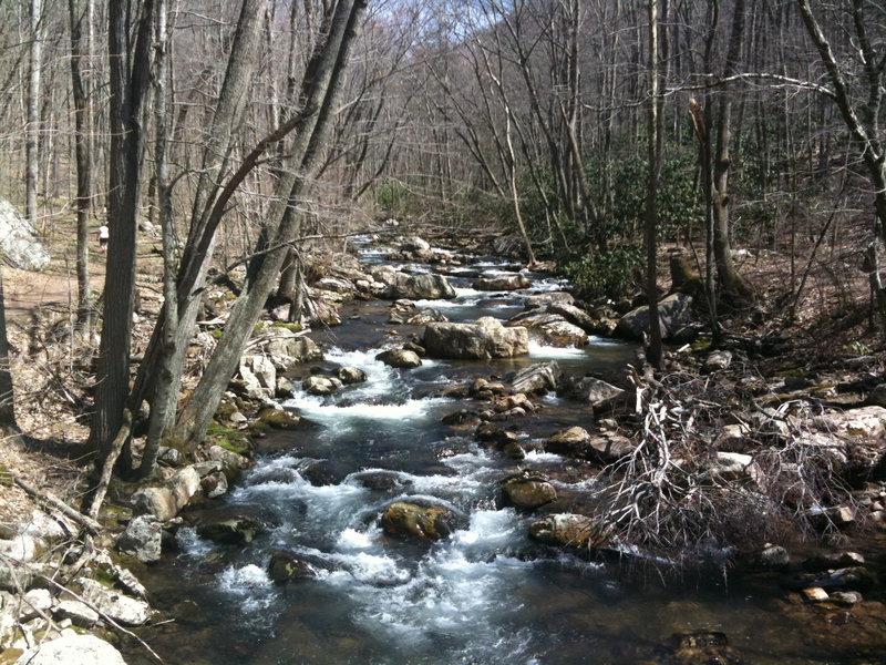 Little Stony Creek along the Cascade Falls Trail.