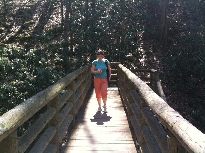 A bridge along the Cascade Falls Trail.