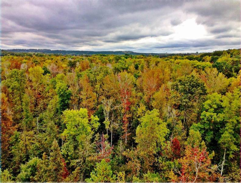 Stunning fall colors seen from the High Bridge on the High Bridge Trail.