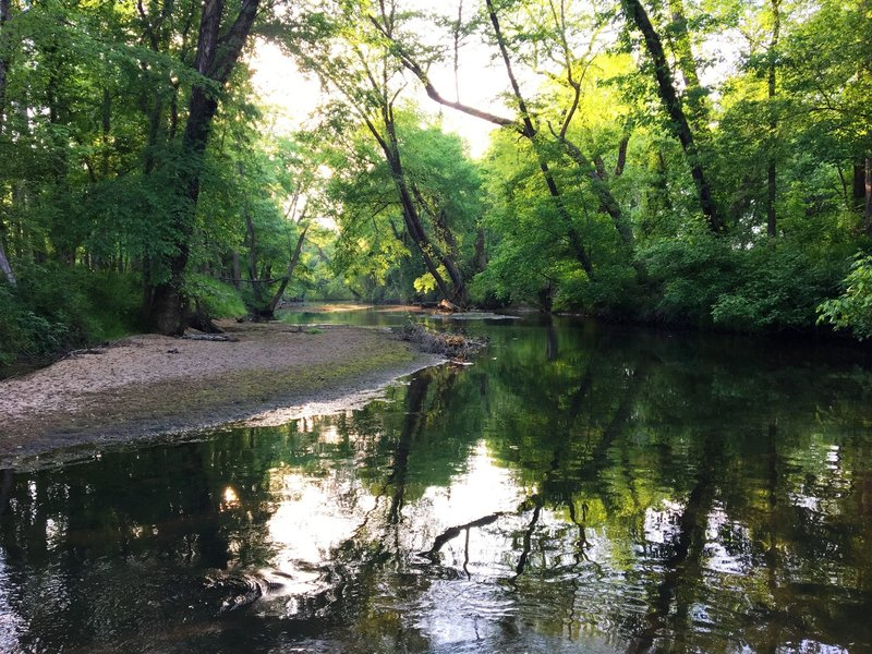 After a day enjoying the trails at Mason Farm Biological Reserve, head north from the parking area to enjoy a quiet lunch by Morgan Creek before hopping in the car.