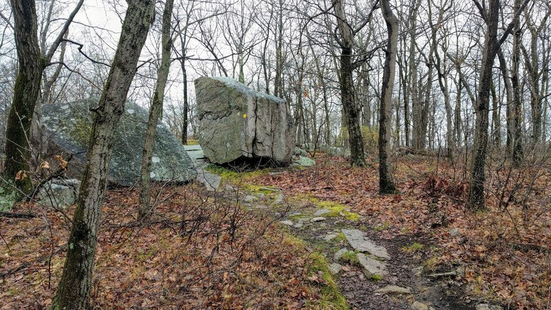 There are interesting glacial rock deposits to explore along the Yellow Trail.