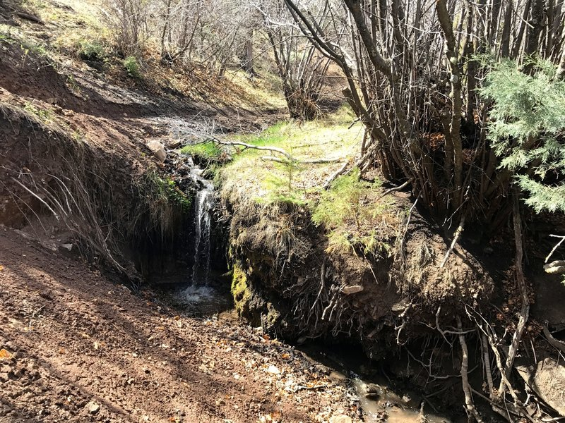A small waterfall just below a natural spring.