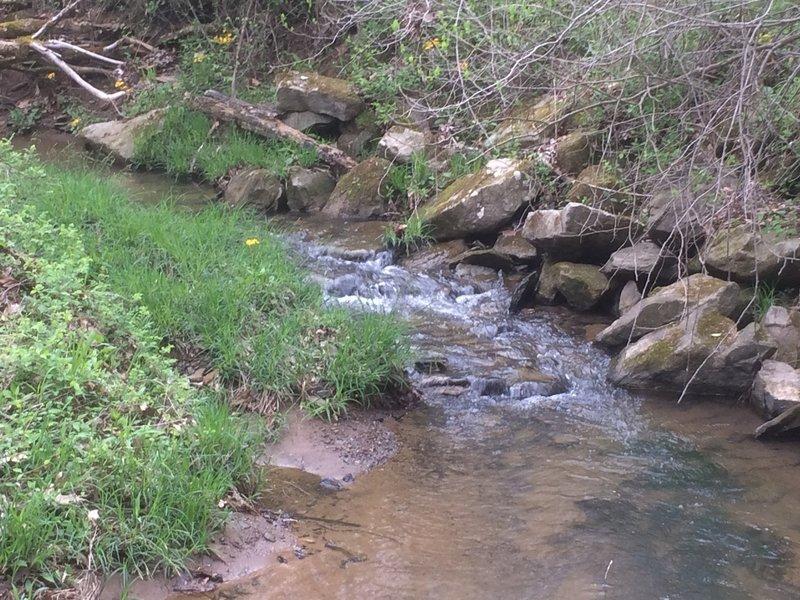 Jordan Run Creek meanders through the preserve.
