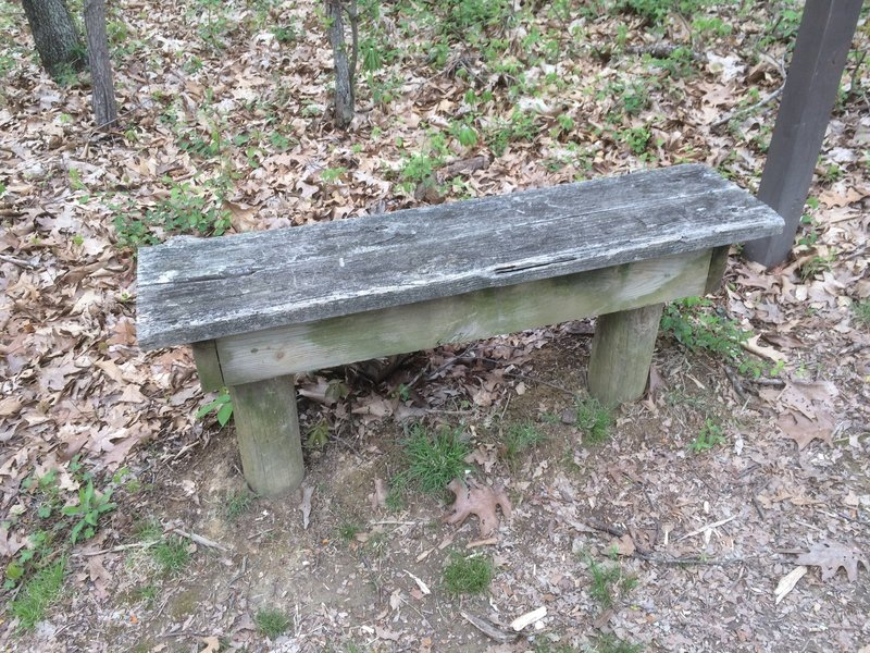 A thoughtfully placed bench at the halfway point!