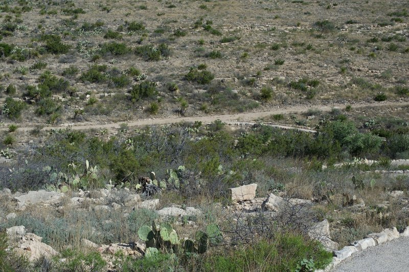 Looking back into the park, the New Mexico environment is on full display.