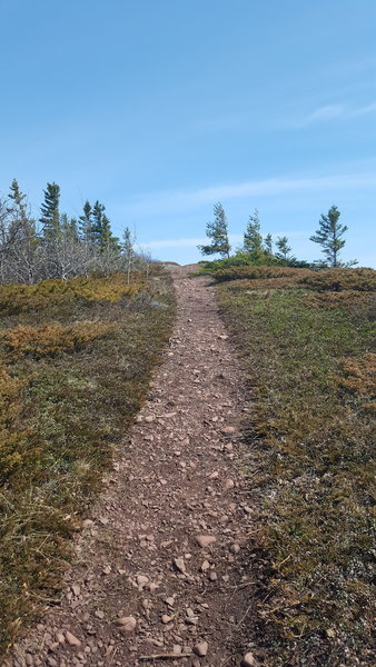 Picture of the rocky path up Mt. Baldy.