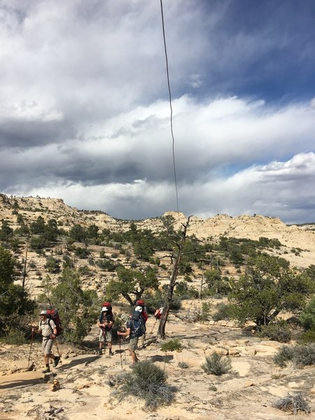 The historic telegraph wire, which you'll follow on most of the Boulder Mail Trail