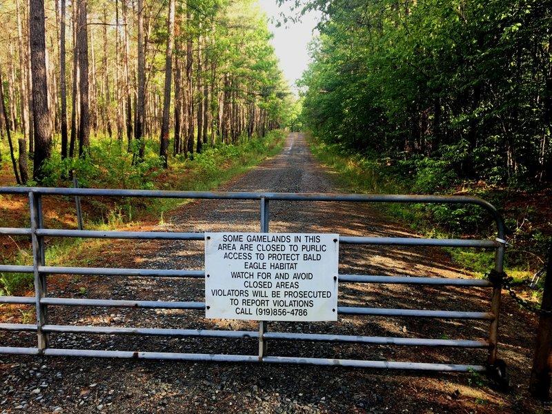Spring/summer gate on Transis Camp Road.