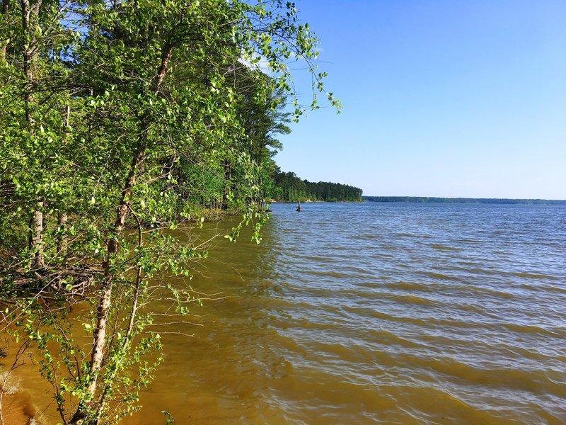 Edge of the lake.