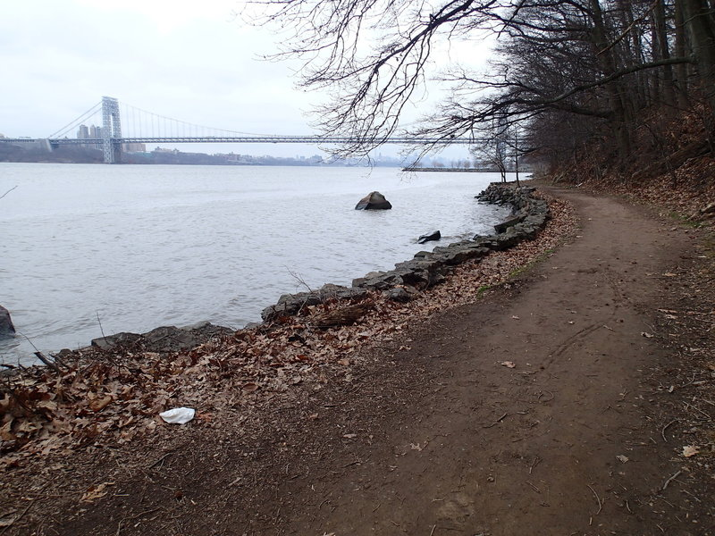 The view of George Washington Bridge from the Shore Trail.