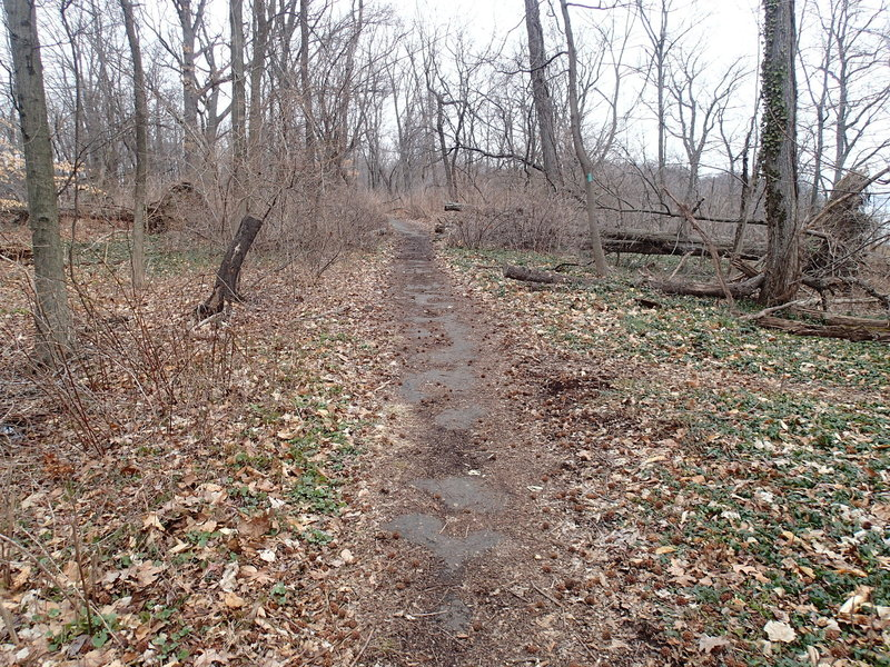 The trail after leaving Allison Park.