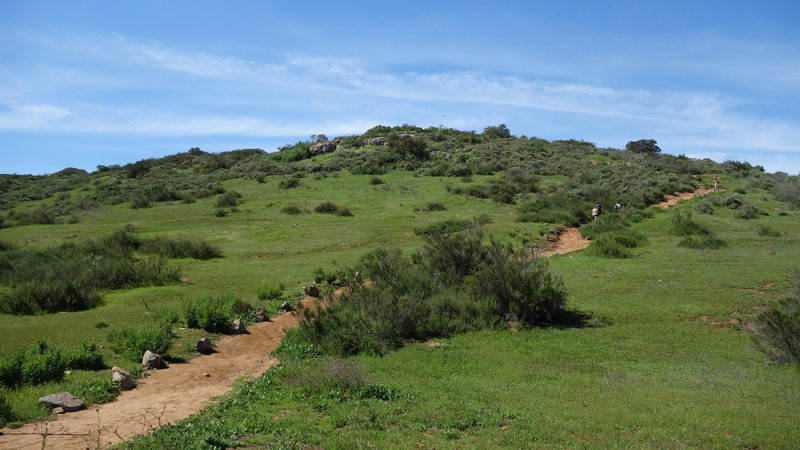 Start of Kwaay Paay Peak Trail at Mission Trails Park.
