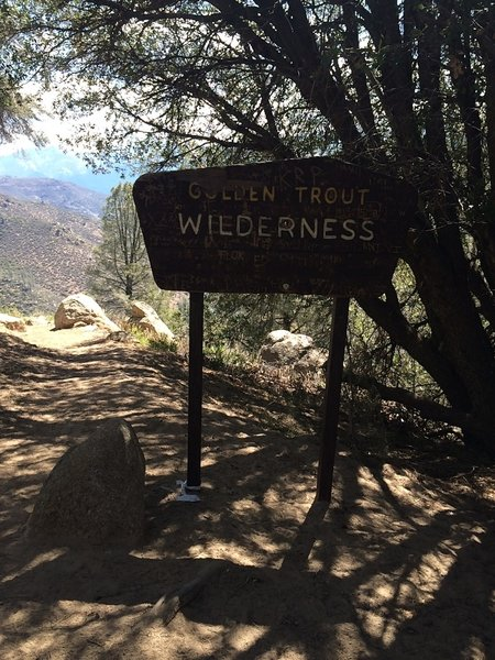 Entering the Golden Trout Wilderness.