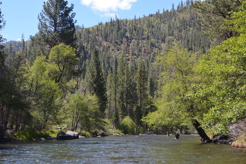 There is great fly fishing along the Kern River.