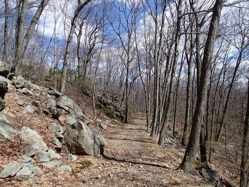 Nelsonville Trail.