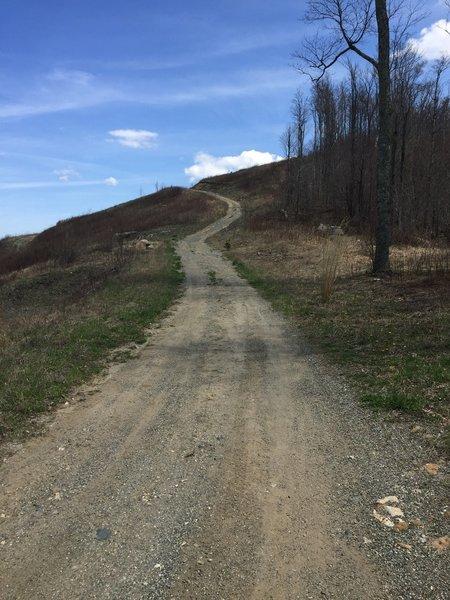 The climb up Ridge Top Loop.