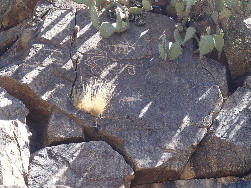 Petroglyphs can be found on the rocks along the trail.