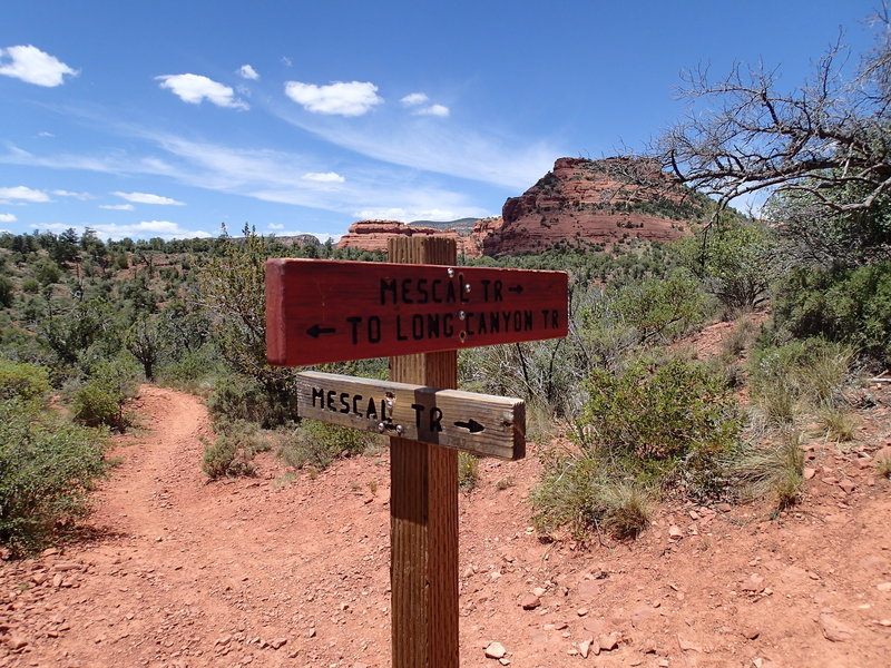 The start of the loop is marked by this sign.