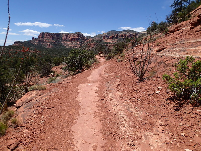 This portion of the trail along Mescal Mountain follows a slickrock tread.