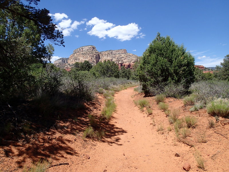 Long Canyon Trail traverses a beautiful tread, allowing you to focus more on the views and less on your feet.