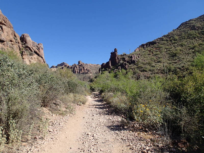 Peralta Canyon Trail offers an awesome backcountry experience amidst the cliffs of the Superstitions.
