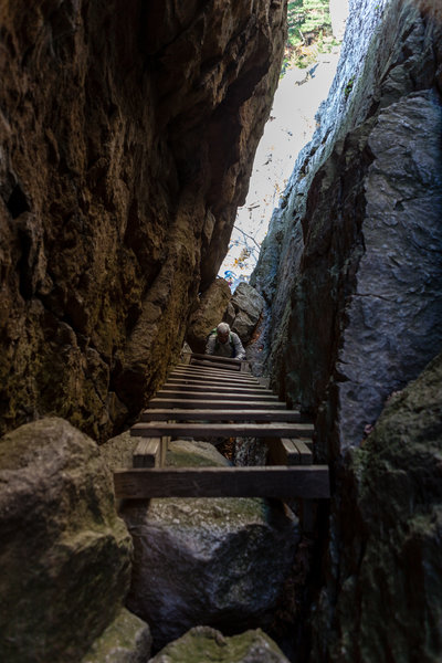 You'll have to climb this ladder between a narrow slot in the rocks along the Labyrinth and Lemon Squeeze.