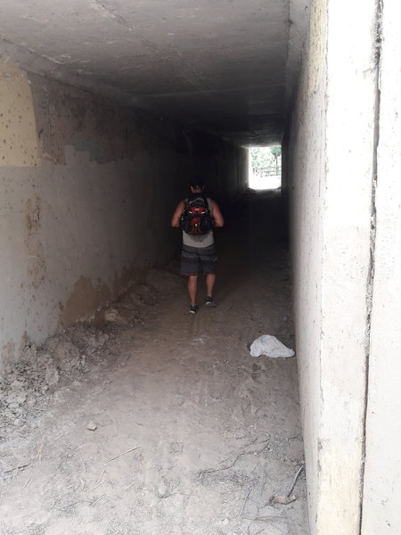 A concrete tunnel takes you underneath Colima Road to rejoin the trail.
