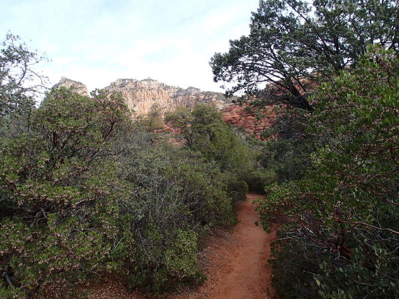 Boynton Canyon Trail offers great looks at the local area geology.