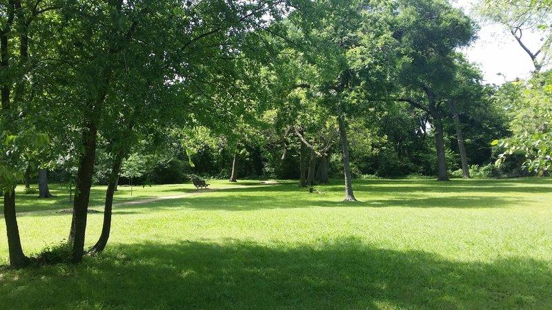 A beautiful grassy area adorns the center of the preserve.