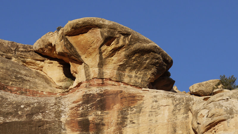 The Chef's Hat formation in Natural Bridges National Monument is just one of many trailside treats in the area.