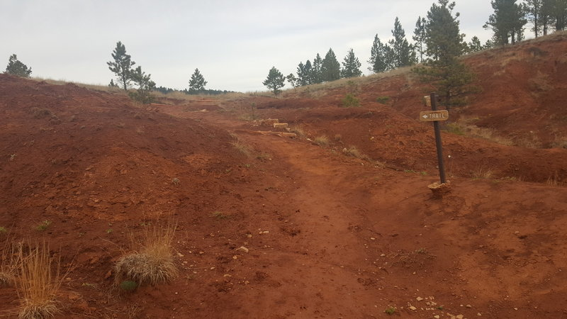 A red shale area of the Red Beds Trail.