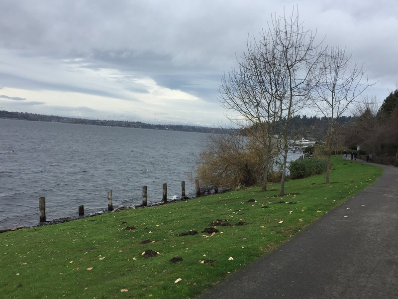 Looking north, you can see Mercer Island and Seattle from the trail.