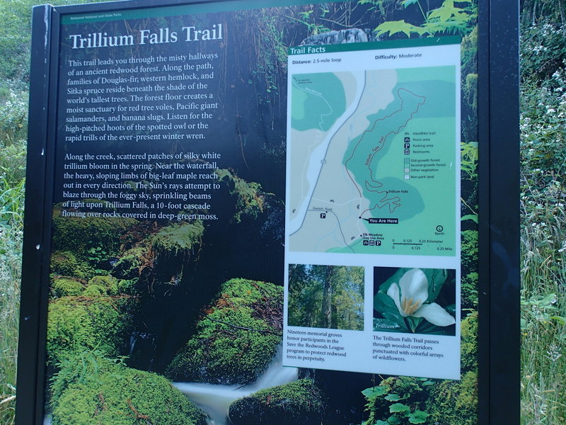 Ample trailhead signage gives you an idea of what to expect before you set foot in the forest.