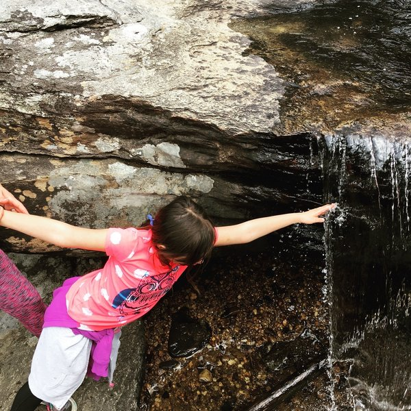 Hiking the trail clockwise allows you to head up the waterfall, enjoy the natural beauty, and add some adventure.