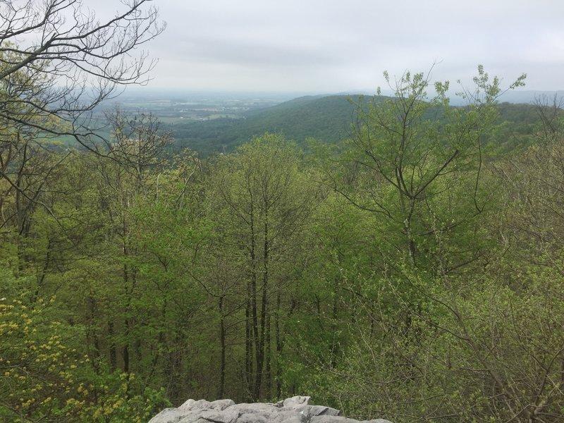 View of white rocks.