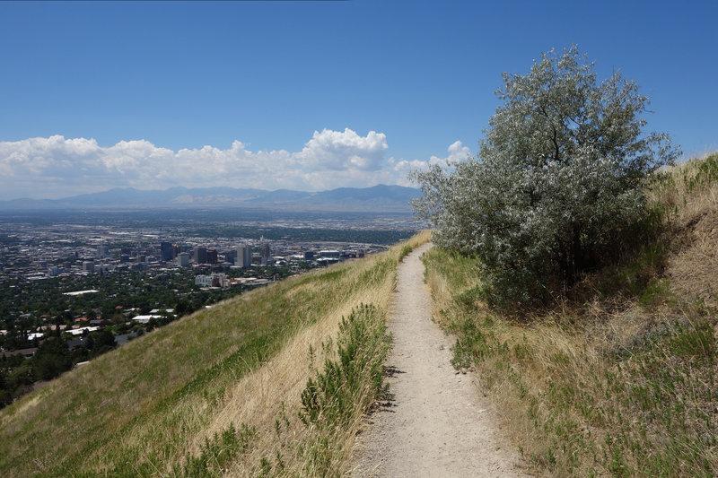 Downtown Salt Lake City seen from the Bonneville Shoreline Trail.