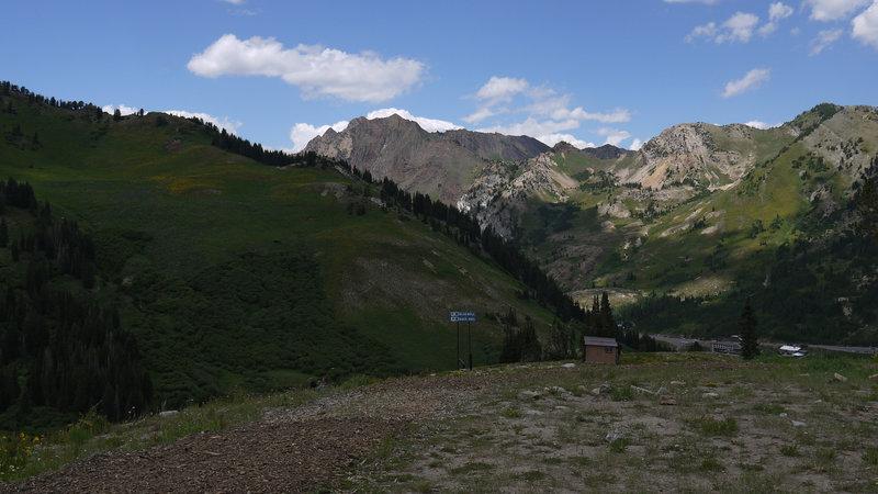 Albion Basin at Alta Ski resort.
