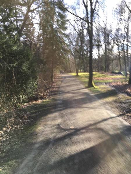 Soft gravel, sun, and trees.