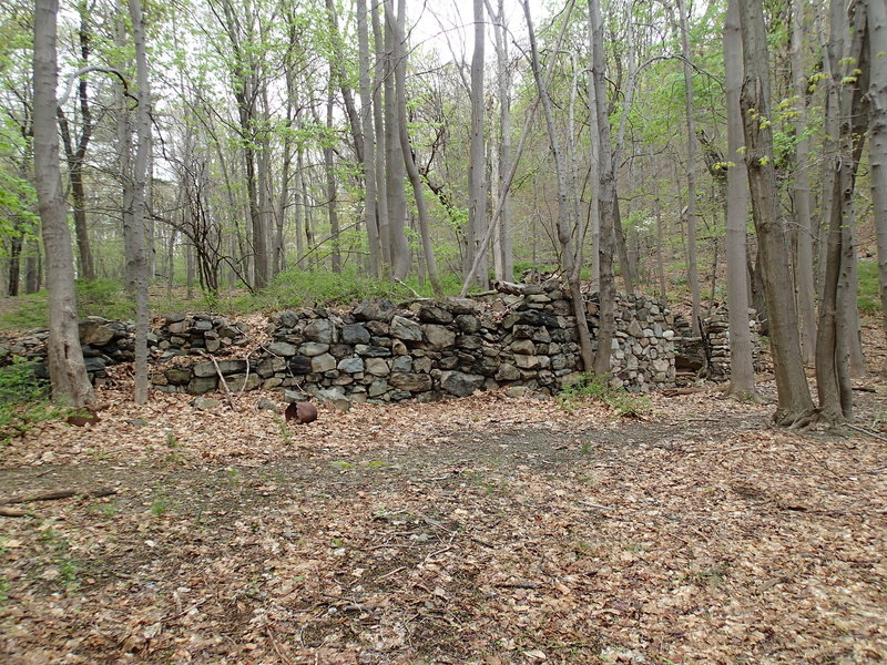 Stone house ruins along the Ruins Carriage Road.