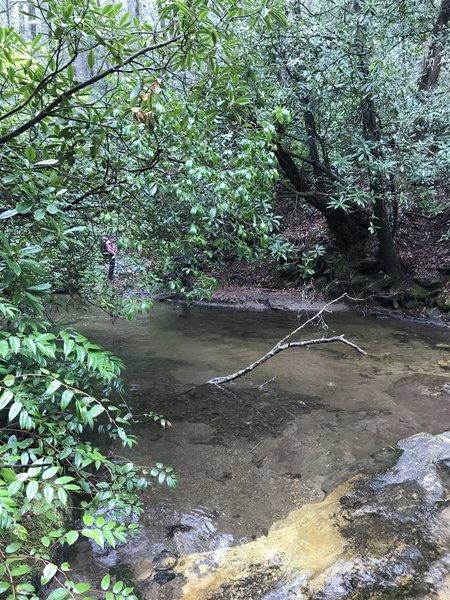 Darnell Creek crossing.
