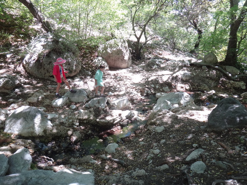 Exploring around the little trickle coming out of Smith Spring.