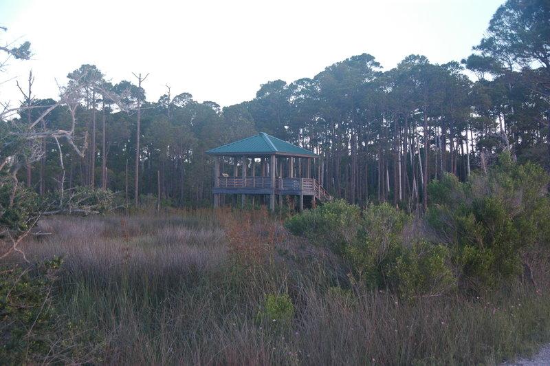 Observation platform on Gator Lake.