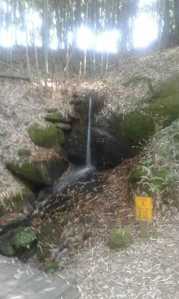 A small trailside waterfall.
