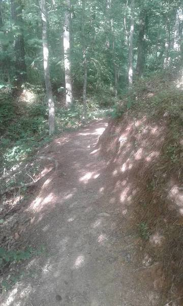 The beginning of the Waterfall Trail.